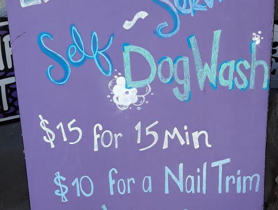 New Self-Service Dog Wash Service